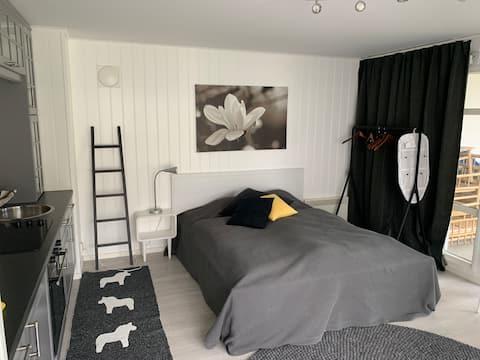Rymlig lägenhet med mycket ljus!