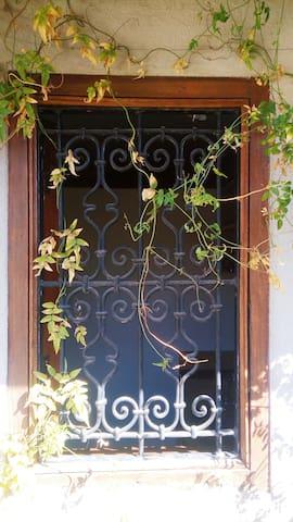 Fenêtre cuisine / kitchen window