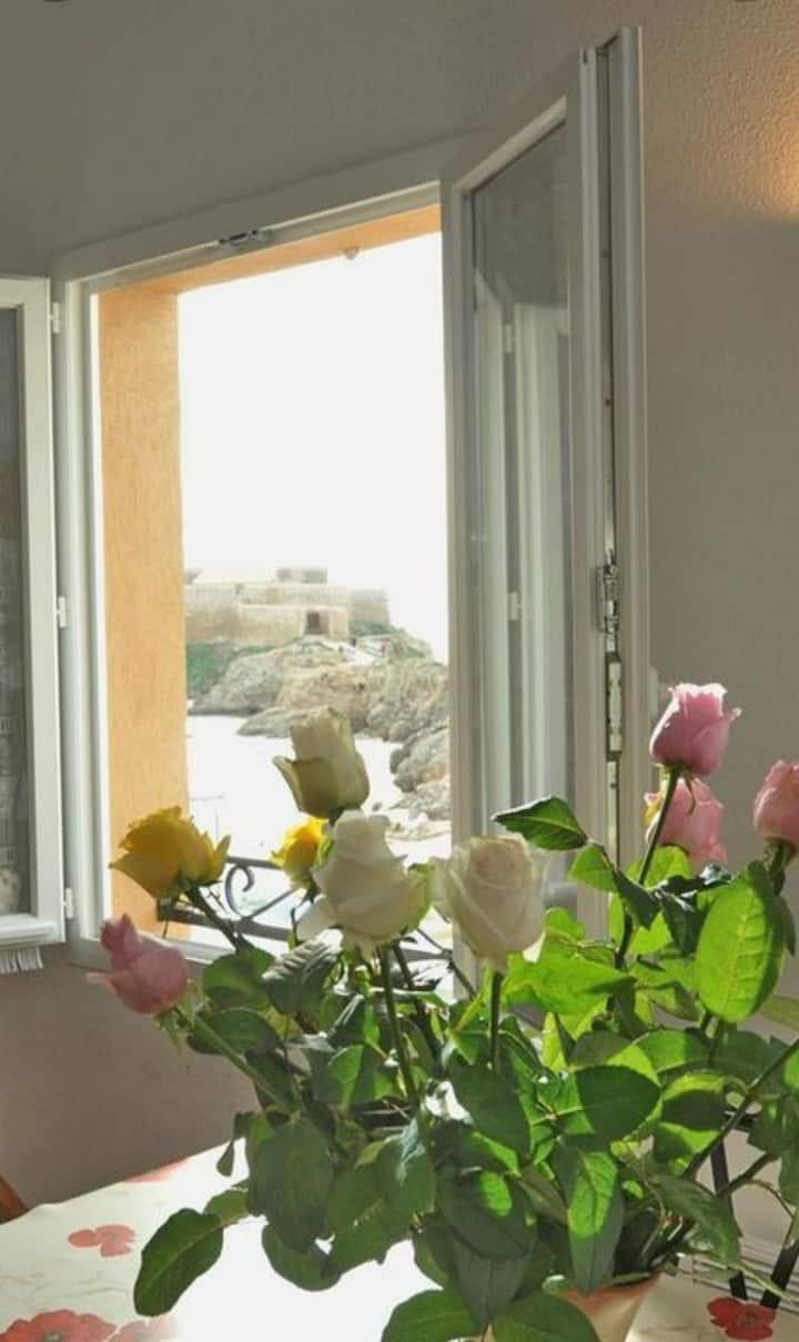 Appartement face aux iles