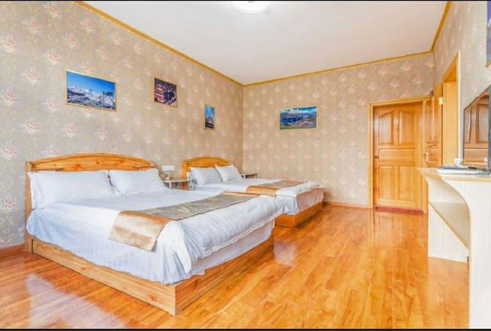 布达拉宫     超大温馨双床房