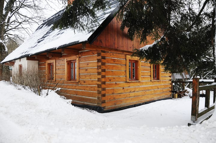 Classic wooden cabin with fireplace