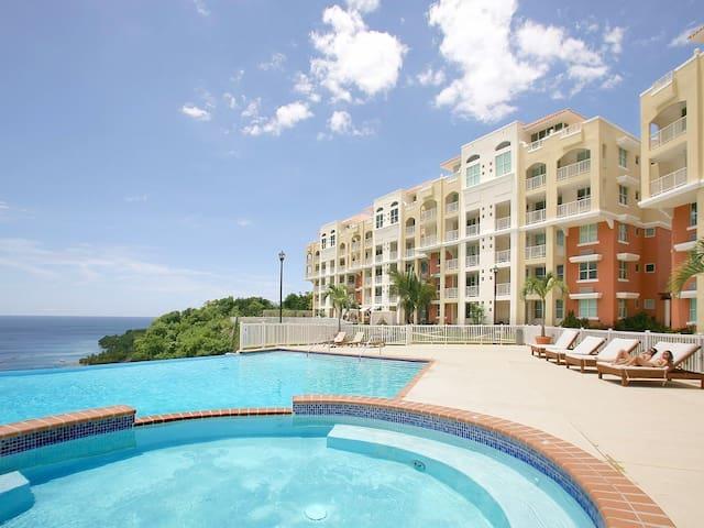 Modern Luxury Penthouse Condominium
