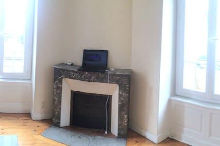 Bel appartement lumineux - Clermont-Ferrand