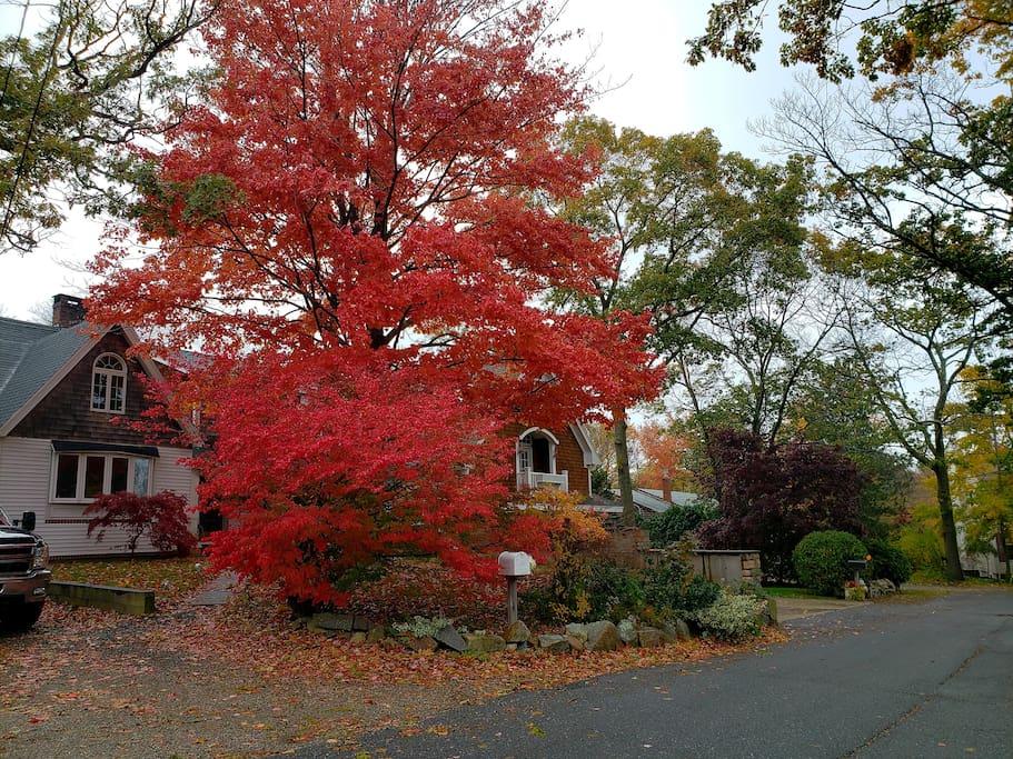 Gotta love the fall season in Rockport Ma