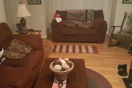 clean quiet room in private house - Williamsburg - Talo