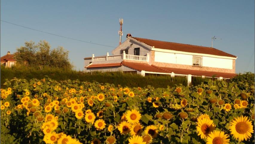 Casa Los Girasoles