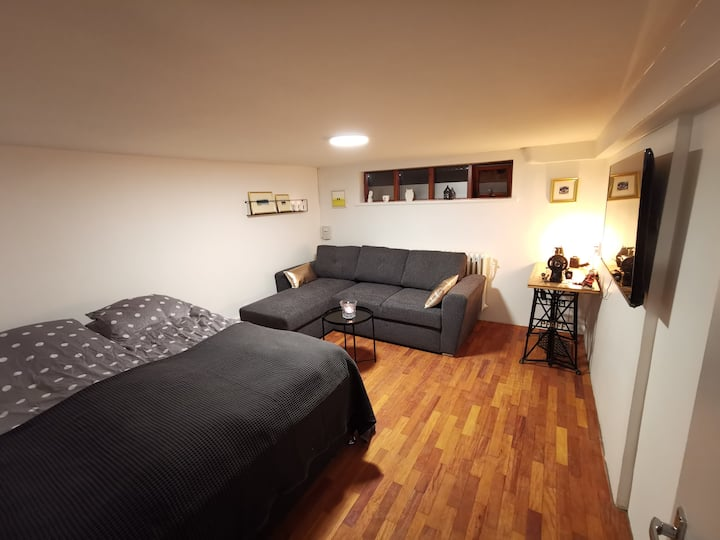 Apartment in the heart of Reykjavík (108 Rvk)