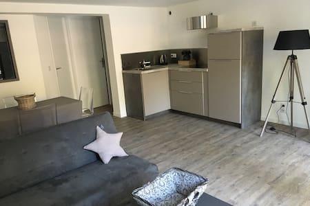 Maison appartement avec terrasse privative - Saint-Sébastien-sur-Loire