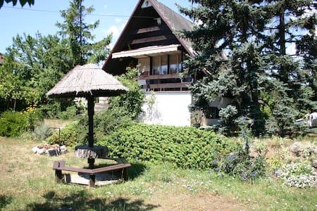Romantic, intimate, pleasantly cool cottage - Alsóörs - Rumah