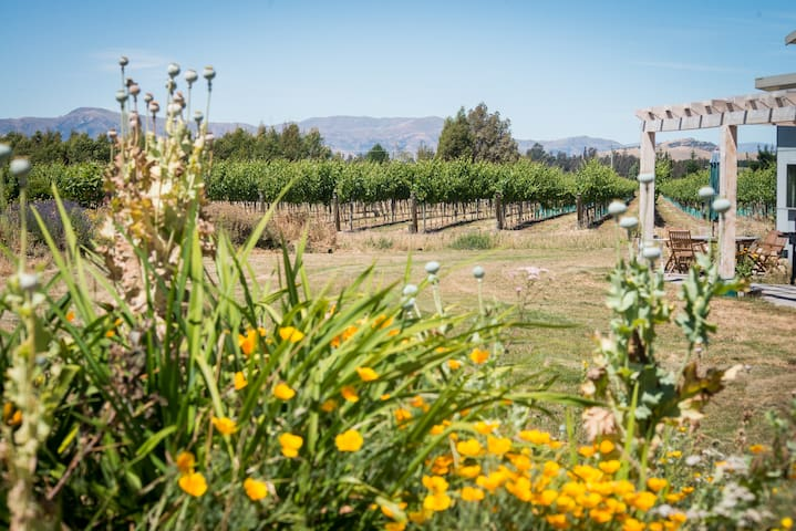 Vineyard View - 246 Riverbank Road, Wanaka - Wanaka - Hus