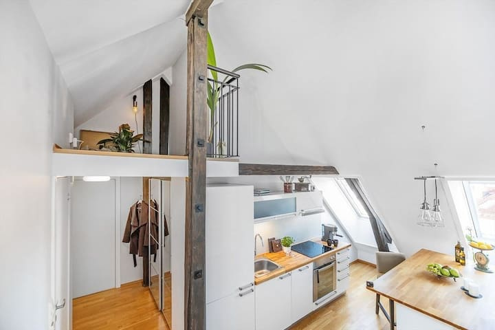 Stylish top floor loft near Grønland/Tøyen