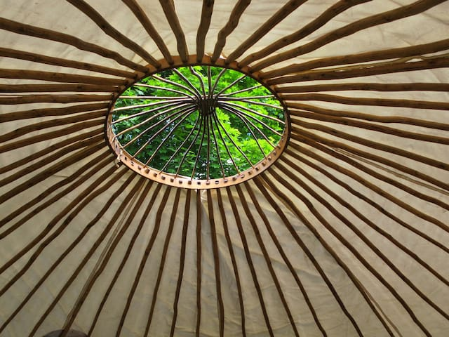 Yurt living in a beautiful nature of Raasepori - Raasepori