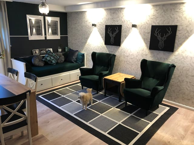 Moderne, großzügige Wohnung in Messenähe, Feenzian