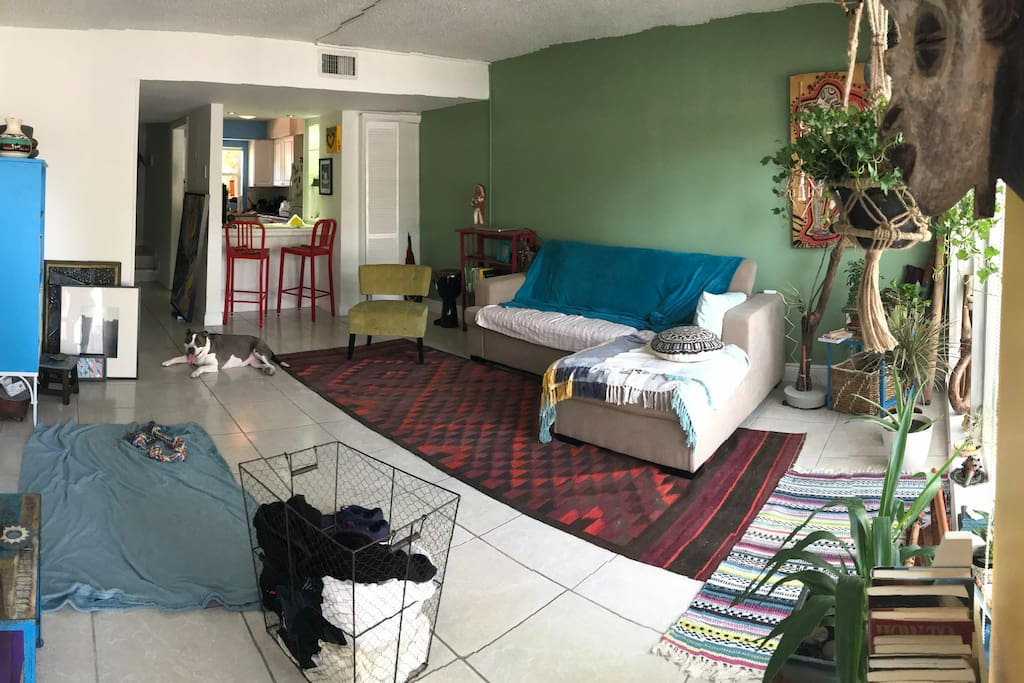 Living Room w/ Pull Out Couch