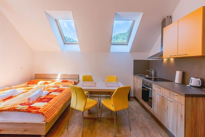 Apartment Dominika 1