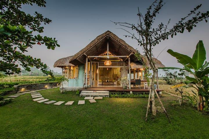 Artistic Charming Designed Villa