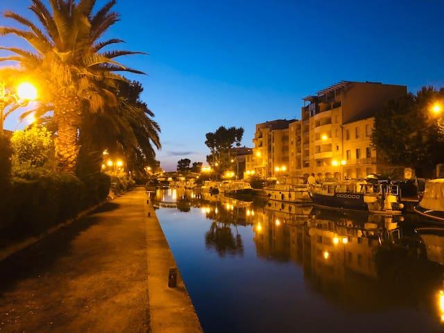 T1 bis proche centre historique et canal