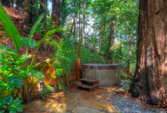 Redwood Treehouse, Downtown Mill Valley