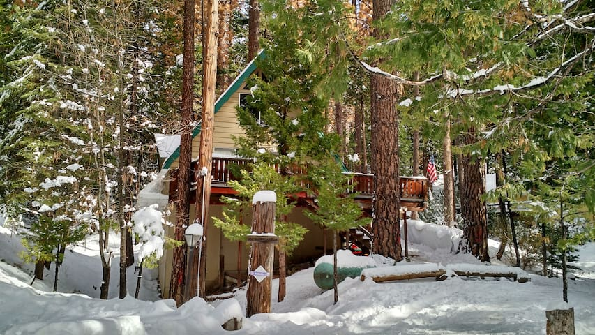 Dog friendly 2BR Cabin W/Loft, sleeps 9