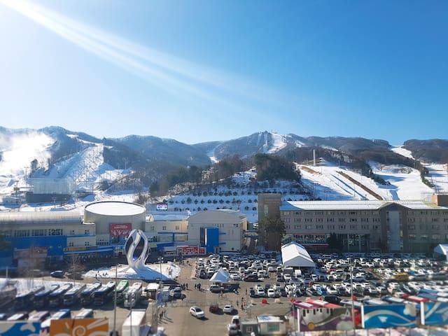 [Pyeongchang Olympic] Room rental, Pheonix park