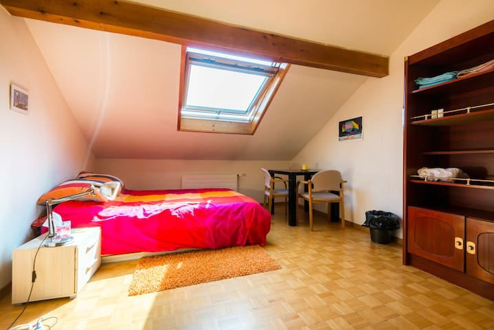 Room for rent  near Geneva Airport - vernier - Apartment