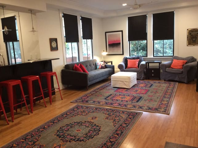 Coolest apartment in Raleigh! Walk downtown!