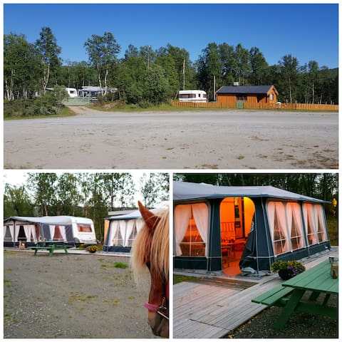 Vår lille koselige campingplass i nærheten av hytta. 100m fra Bekken gård. Turistridning.