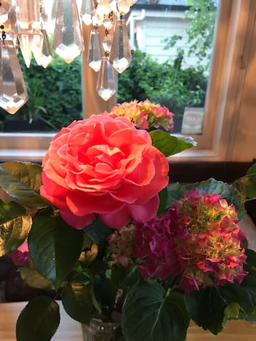 Wander through the boulevard of roses and hydrangeas or pick a fresh bunch