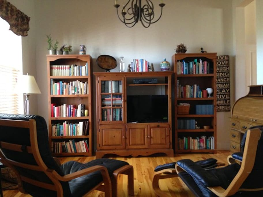 Den with books galore, TV, and comfy Swedish leather and wood chairs.