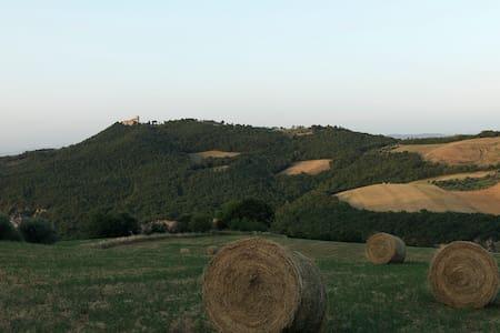 IL TRAMONTO DI GRAZIELLA - San Venanzo