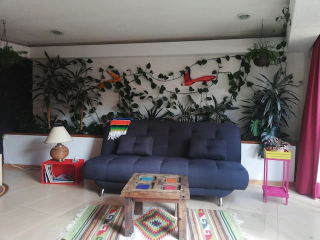 PRIVATE SUITE IN COYOACAN NEIGHBORHOOD
