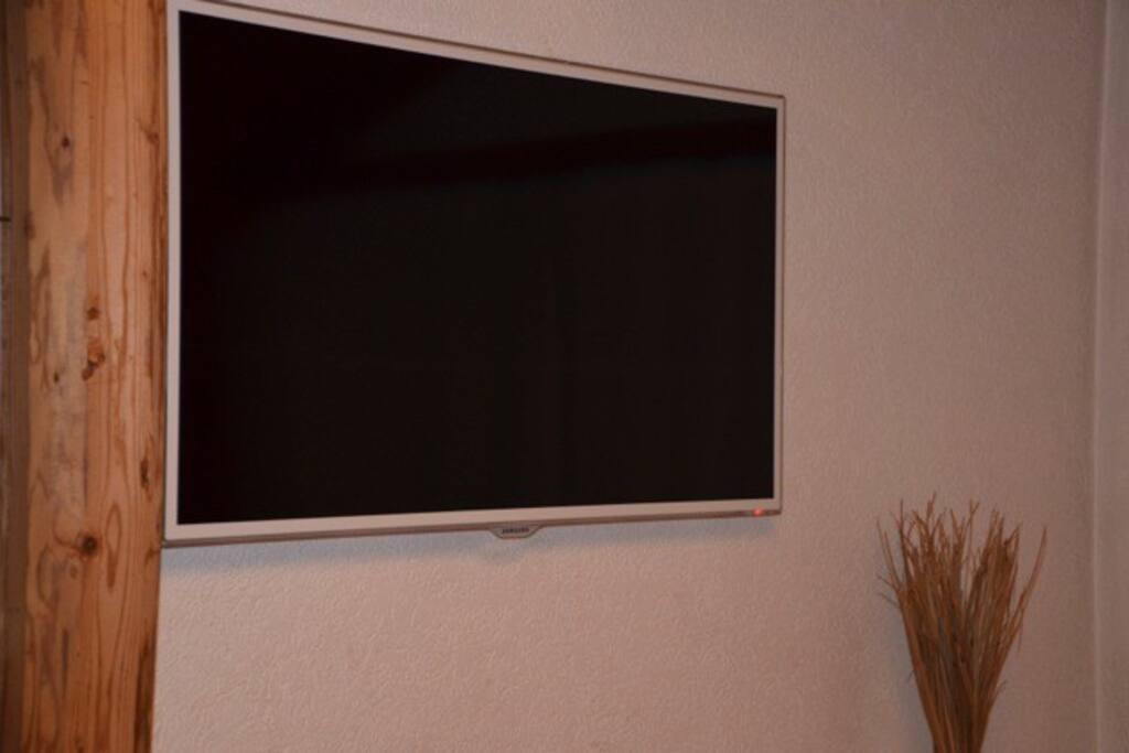 Sateliten- und Swisscom TV im Zimmer