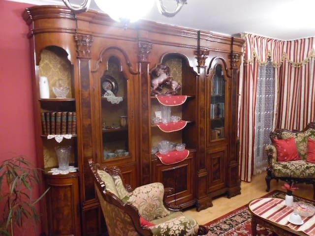 Luxury apartment near Bratislava, Slovakia Ring! - Dunaszerdahely - Apartamento