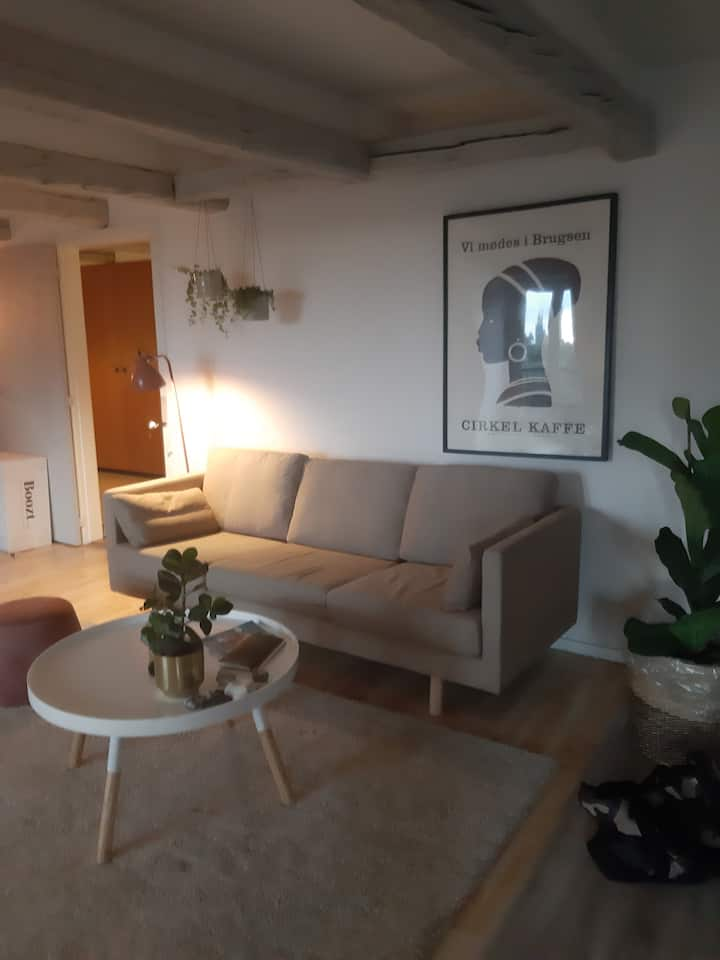 Charming room with perfect surroundings midtown