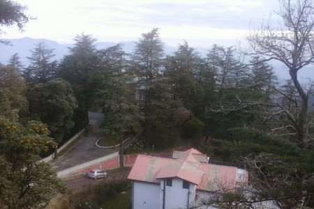 Country roads, take me home, to the place I belong - Shimla - Wohnung