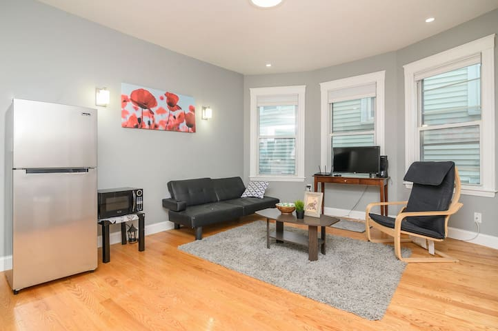 Great room in Mission Hill, Boston