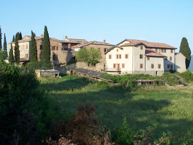 Farmhouse in Monticiano ID 363