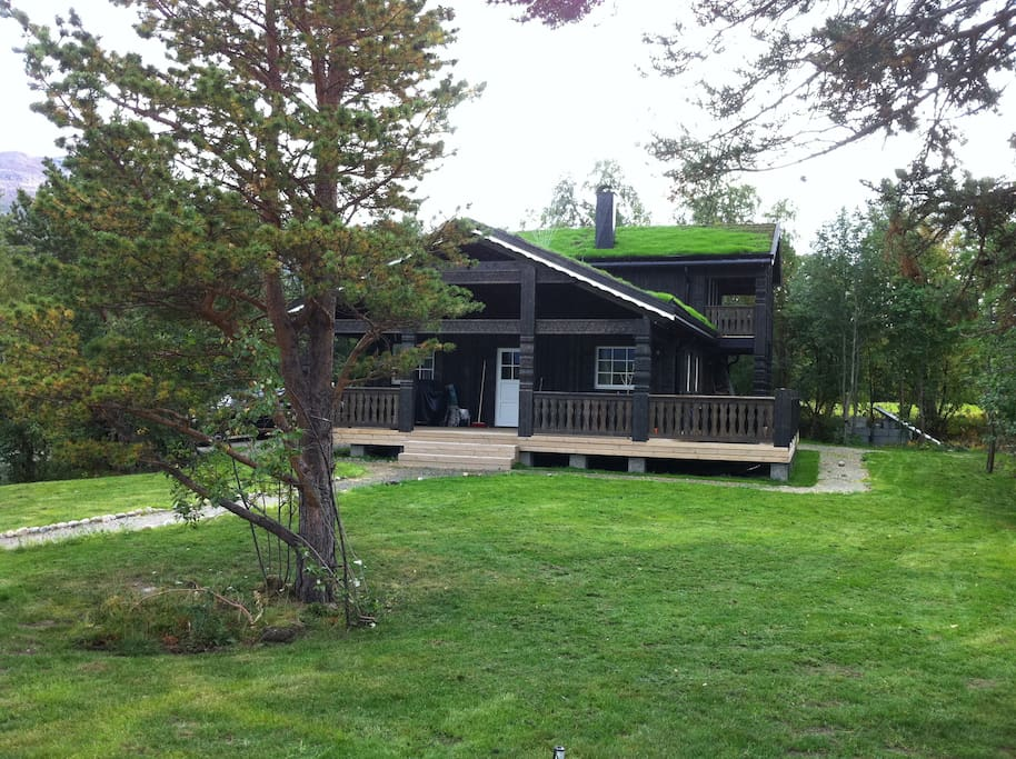 Large cabin with turf roof