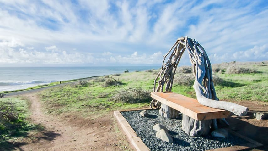 Visit this unique bench on Fiscalini Preserve.
