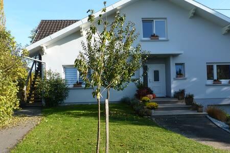LOGIS DES AULNES - Steinbrunn-le-Bas - Wohnung