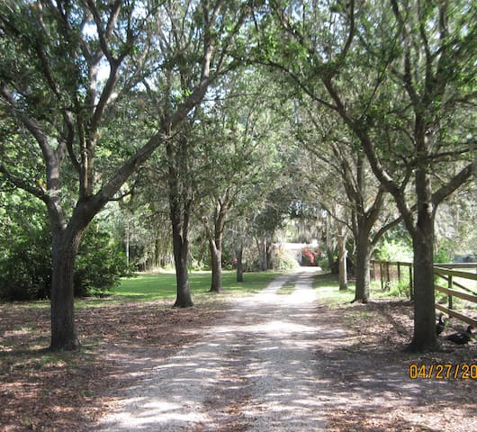 Seven Oaks On The Orange River Buckingham Florida - Fort Myers - Gîte nature