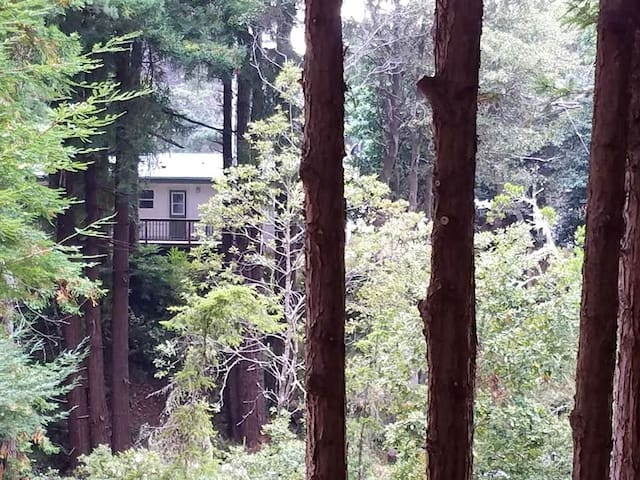 HAVENS CREEK GUESTHOUSE in REDWOODS by the CREEKS