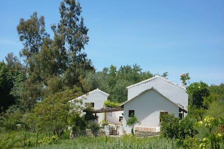 Finca Barbara (Barbara's Farm) - Setenil de las Bodegas - House