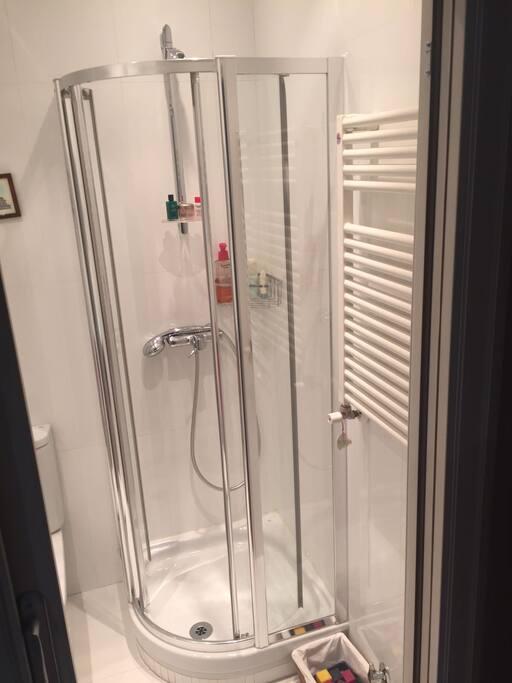 Private bedroom in retiro park houses for rent in madrid for Bathrooms in retiro park