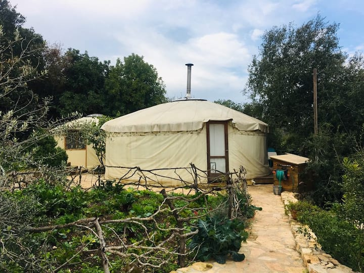 The two Yurts - a unique home in nature