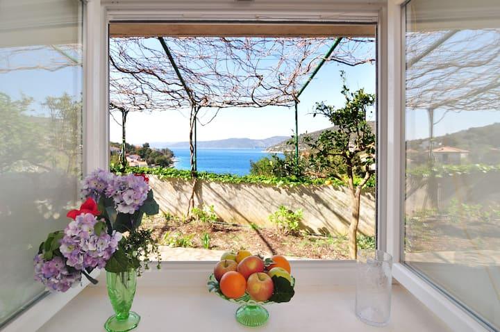 Holiday home Paronda with garden, sea 50 meters