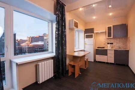 Атмосферная однокомнатная квартира на Ленина 29 - Krasnoyarsk