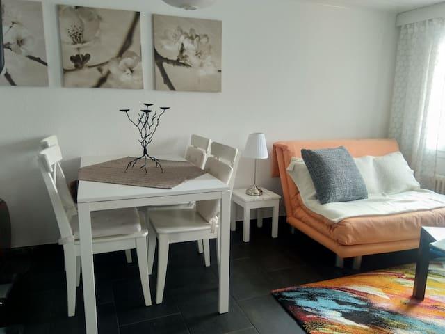 gemütliche 2-Zimmerwohnung mit herrlicher Aussicht