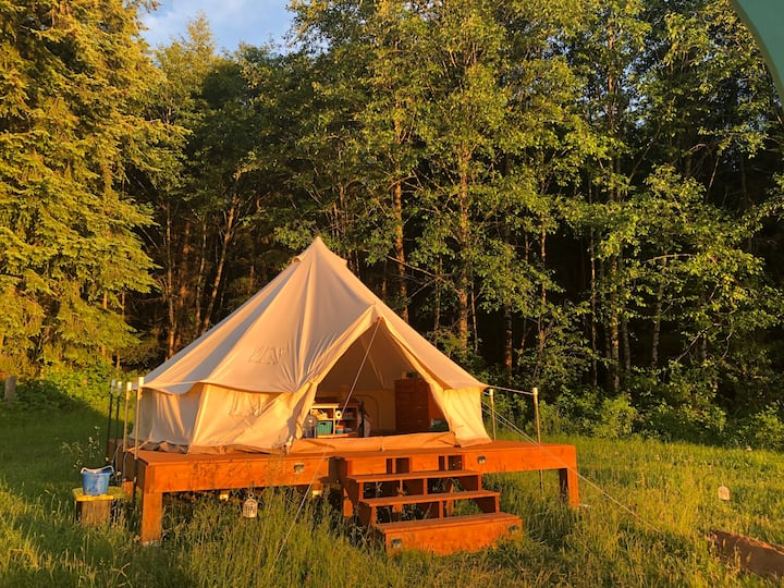 Hilltop Glamping on Organic Farm