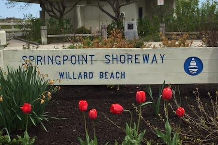 Sun Splashed New 2 BR, 1 Block from Willard Beach